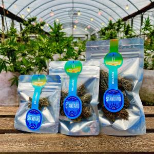 T1 Hemp CBD Trimmed Flower Buds by Appalachian Standard