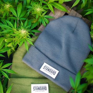 Green and Gray Beanie by Appalachian Standard