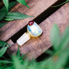 Kitchen Multi Hole Fumed Glass Slide CBD, Hemp, and Smoking Accessory from Appalachian Standard