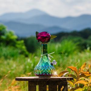 Aurora by My Bud Vase