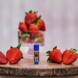 Strawberry Dreamsicle Vibe Vessel Hemp and CBD Oil from Appalachian Standard